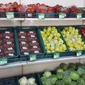 depozit sortat fructe germania