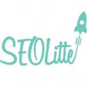 Servicii SEO si promovare site-uri